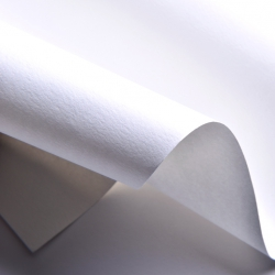กระดาษ Solution รุ่น WILD